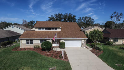 Spruce Creek Fly In Single Family Home For Sale: 2531 Cross Country Drive
