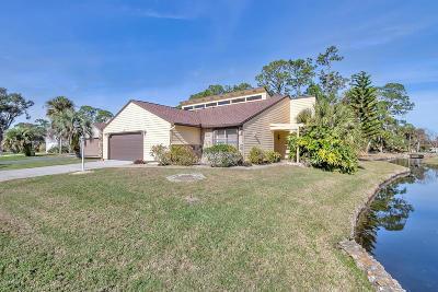 Daytona Beach Single Family Home For Sale: 101 N Gull Circle