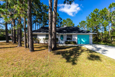 Palm Coast Single Family Home For Sale: 26 Buttonbush Lane