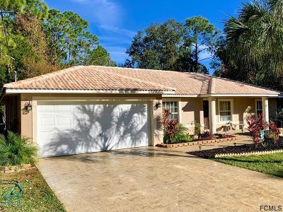 Palm Coast Single Family Home For Sale: 13 Pillar Lane