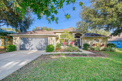 Ormond Beach Single Family Home For Sale: 41 Lakebluff Drive