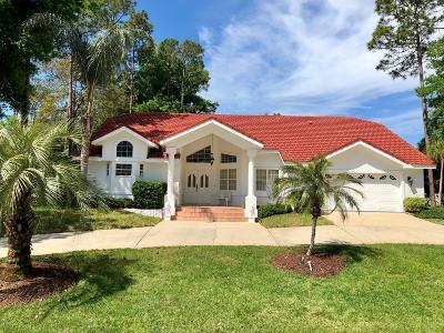 Palm Coast Single Family Home For Sale: 14 Woodguild Place