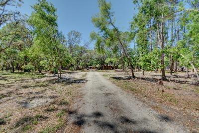 Port Orange Residential Lots & Land For Sale: 1727, 1737 Fern Park Dr
