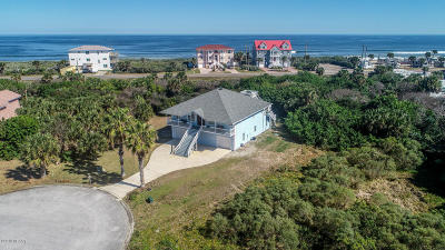 Flagler Beach Single Family Home For Sale: 2995 Painters