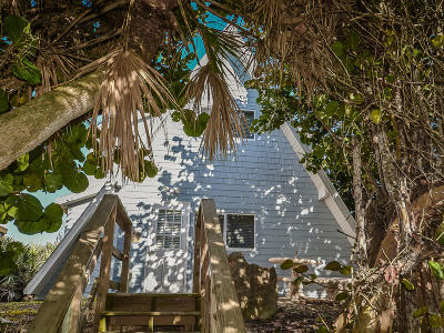 New Smyrna Beach Single Family Home For Sale: 7107 S Atlantic Avenue