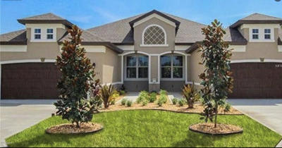 Ormond Beach Single Family Home For Sale: 3249 Bailey Ann