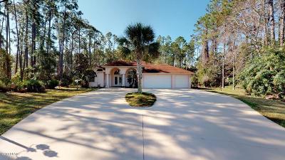 Palm Coast Single Family Home For Sale: 13 Washton Place