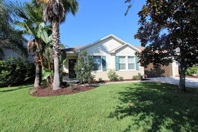 Daytona Beach Single Family Home For Sale: 169 Boysenberry Lane