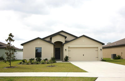 Deland Single Family Home For Sale: 3424 Kashmira Court