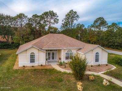 Palm Coast Single Family Home For Sale: 2 Walla Place