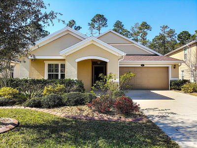 Daytona Beach Single Family Home For Sale: 235 Grande Sunningdale Loop