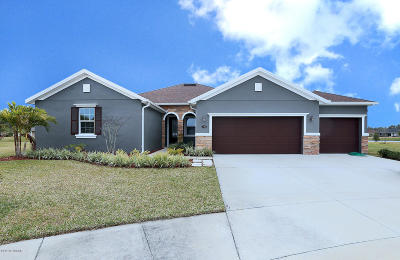 Palm Coast Single Family Home For Sale: 110 S Starling Drive