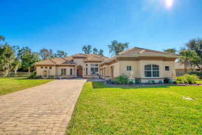 Ormond Beach Single Family Home For Sale: 8 Old McDuffie Circle