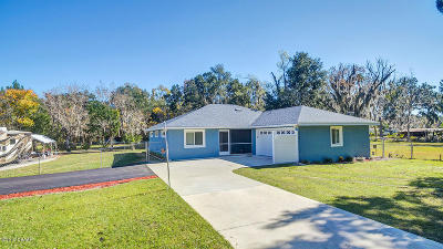 Port Orange Single Family Home For Sale: 3683 Jackson Street