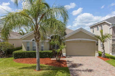 Port Orange Single Family Home For Sale: 3816 Calliope Avenue