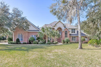 Ormond Beach Single Family Home For Sale: 3520 Kilgallen Court