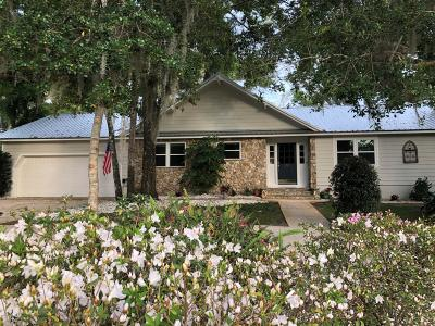 Ormond Beach Single Family Home For Sale: 231 Rio Pinar Drive