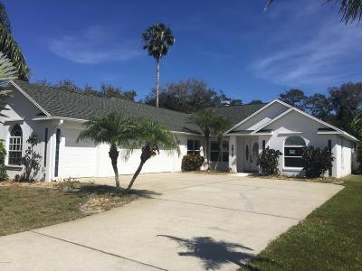 New Smyrna Beach Single Family Home For Sale: 2615 Turnbull Estates Drive