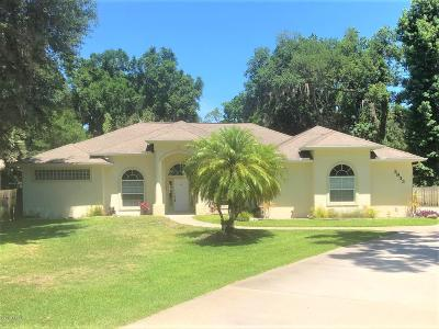 Ormond Beach Single Family Home For Sale: 3933 Acoma Drive