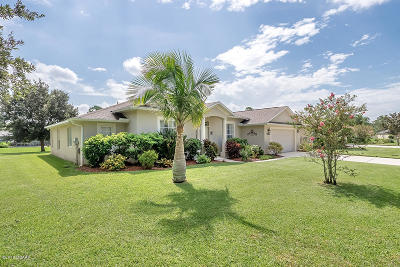 Port Orange Single Family Home For Sale: 5486 Trakia Trail