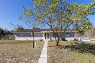 Deltona  Single Family Home For Sale: 1732 Ingram Terrace