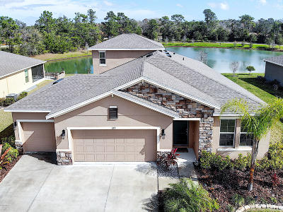 Ormond Beach Single Family Home For Sale: 323 River Vale Lane