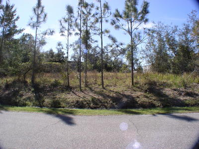 Spruce Creek Fly In Residential Lots & Land For Sale: 2621 Slow Flight Drive
