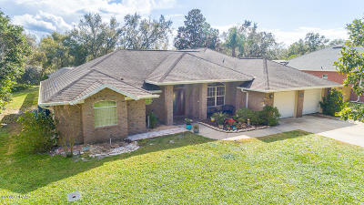 Port Orange Single Family Home For Sale: 5963 Boggs Ford Road