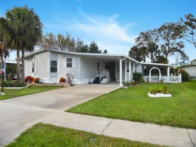 Port Orange Single Family Home For Sale: 727 Rampart Drive