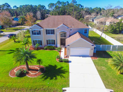 Palm Coast Single Family Home For Sale: 161 Beachway Drive
