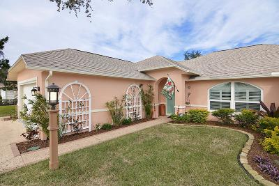 Palm Coast Single Family Home For Sale: 9 Crazy Horse Court