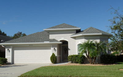 Port Orange Single Family Home For Sale: 6806 Vintage Lane