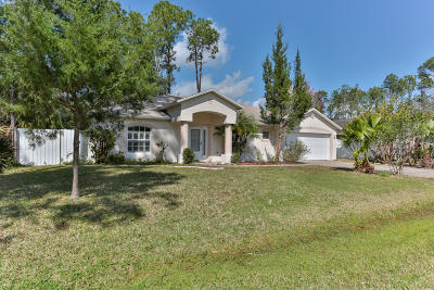 Palm Coast Single Family Home For Sale: 31 Powder Hill Lane
