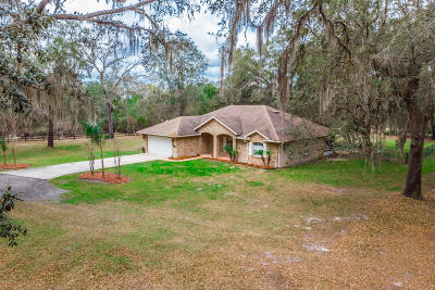 Daytona Beach Single Family Home For Sale: 971 Indian Lake Road
