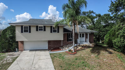 Volusia County Single Family Home For Sale: 2250 E Old Mill Drive