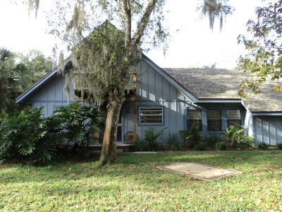 New Smyrna Beach Single Family Home For Sale: 220 N Glencoe Road