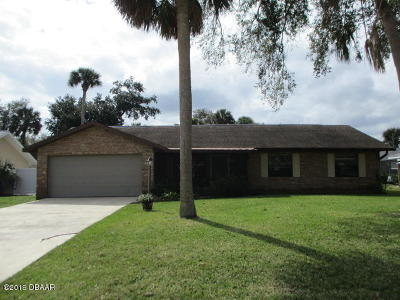 Port Orange Single Family Home For Sale: 625 Hamlet Drive