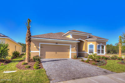 Daytona Beach Single Family Home For Sale: 273 Cyan