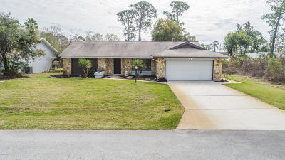 Palm Coast Single Family Home For Sale: 81 Fort Caroline Lane