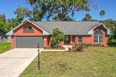 Port Orange Single Family Home For Sale: 3449 Country Manor Drive