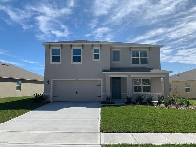 Port Orange Single Family Home For Sale: 1818 Palmetto Scrub Circle