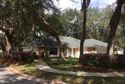 Port Orange Single Family Home For Sale: 6105 Everglades Drive