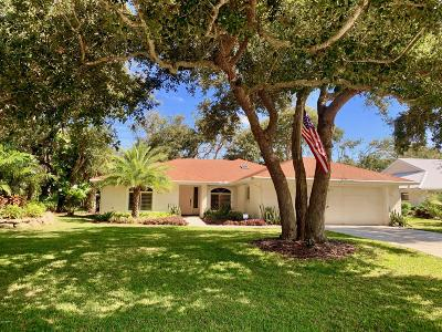 New Smyrna Beach Single Family Home For Sale: 811 Evergreen Street