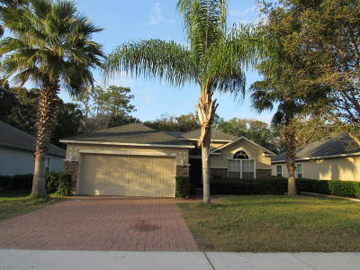 Port Orange Single Family Home For Sale: 3893 Sunset Cove Drive