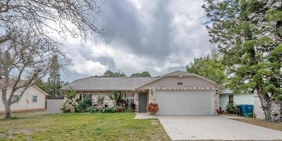Daytona Beach Single Family Home For Sale: 1181 Forestwood Street