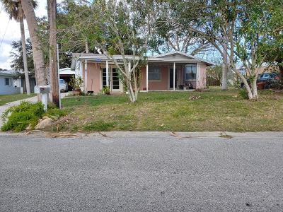 Ormond Beach Single Family Home For Sale: 77 Brooks Drive
