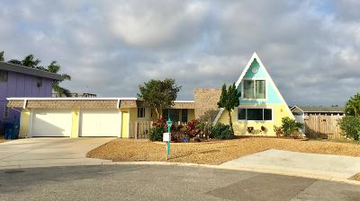 Port Orange Single Family Home For Sale: 3790 Emilia Drive