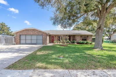 Port Orange Single Family Home For Sale: 810 Black Duck Drive