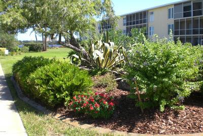 Daytona Beach Condo/Townhouse For Sale: 719 S Beach Street #101B