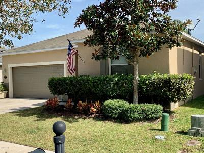 New Smyrna Beach Single Family Home For Sale: 511 Aeolian Drive